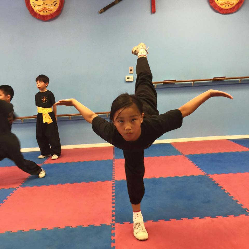 Dragon Mountain Martial Arts Academy - Kung Fu Training in ...
