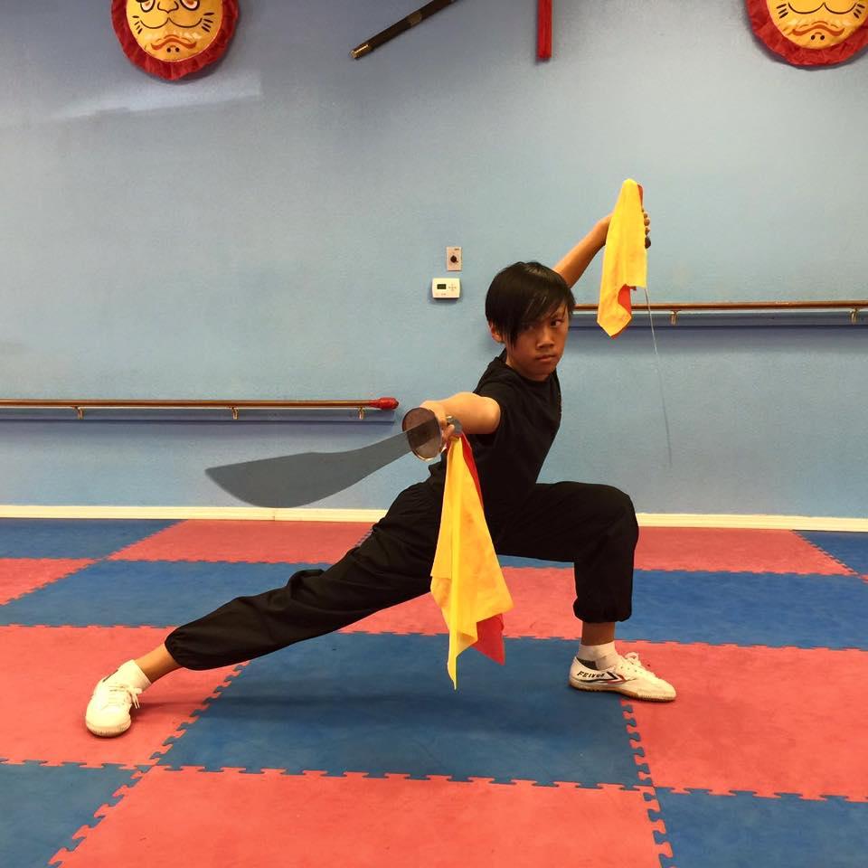 Wushu kung fu