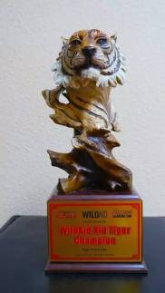 2016 WildAid Tiger Claw Competition 1st Place Tiger Form